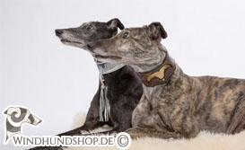 Windhund Halsbänder Shop